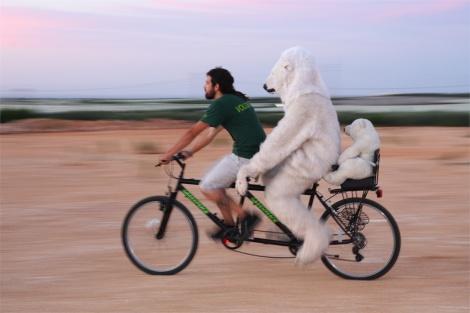 pedalata artico